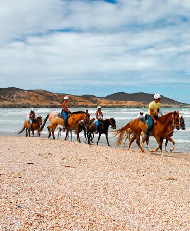 https://viajesmargarita.com/sistema_travel/public/imagenes_excursiones/5d5fea46870a4.jpg